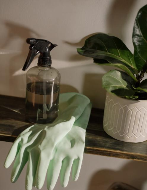 Situaţii în care persoanele fizice apelează la servicii de curăţenie rezidenţială